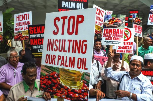 抵制无益解决棕榈油造成的环境问题