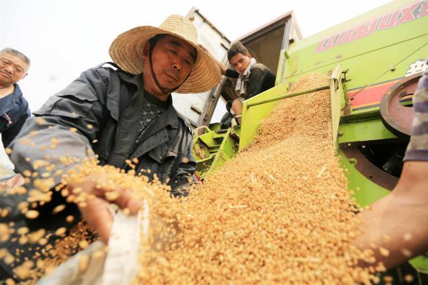 """2020:吃饱的中国,如何""""吃好""""?"""