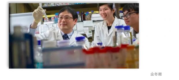 香港大学病毒学家:最主要是要解决人传人的问题