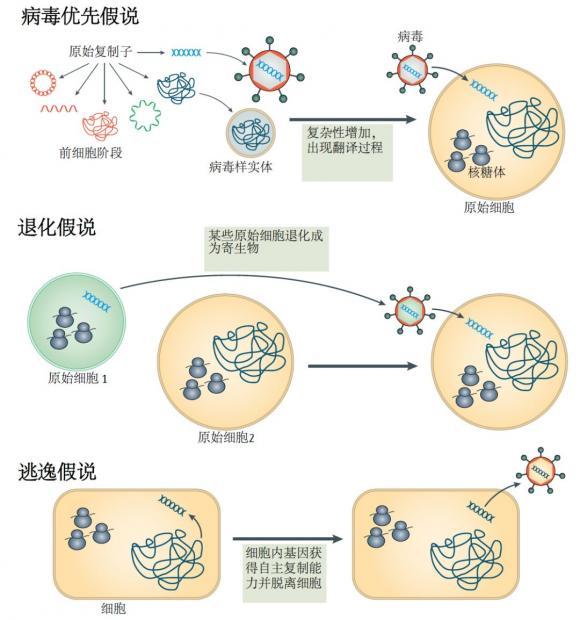 传播力胜过SARS,需要担心新冠病毒变异吗?
