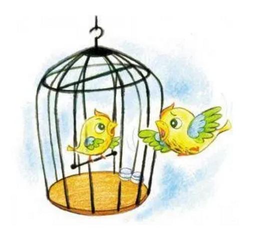 笼子的反义词是翅膀