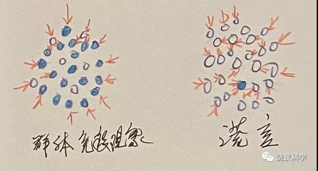"""饶毅:英国首相的""""群体免疫""""谎言"""