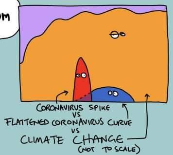 从新冠疫情看全球气候与自然保护的行动窗口