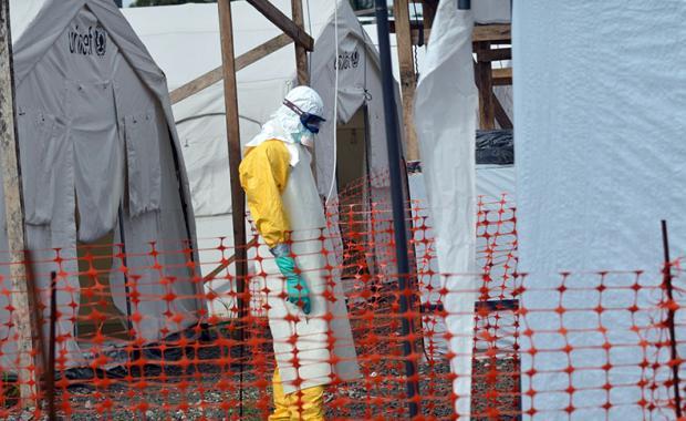 里戈:埃博拉病毒的前生今世
