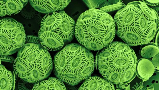 Science前沿:世界上最复杂的微粒——超越自然复杂性的合成物