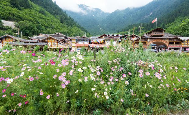 生物多样性保护:从中国西部历史中寻找答案