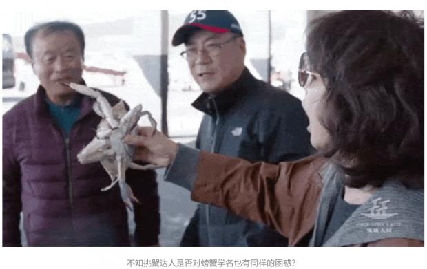 陈晓卿:蟹忆屑记