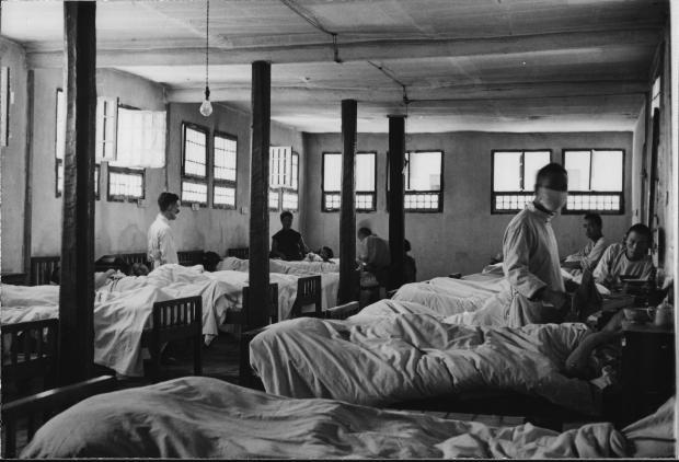 人与动物:20世纪中国传染病防治史的启示