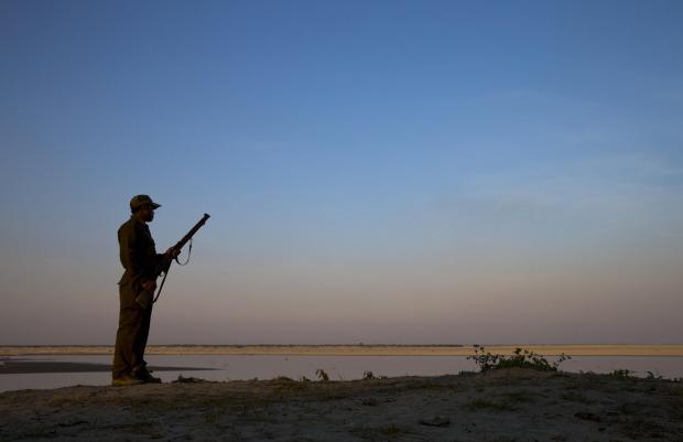 疫情封锁期间南亚偷猎活动激增