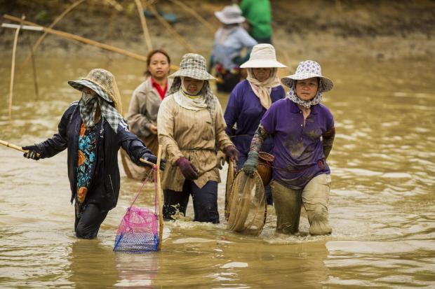 中国关掉湄公河水龙头?让数据说话