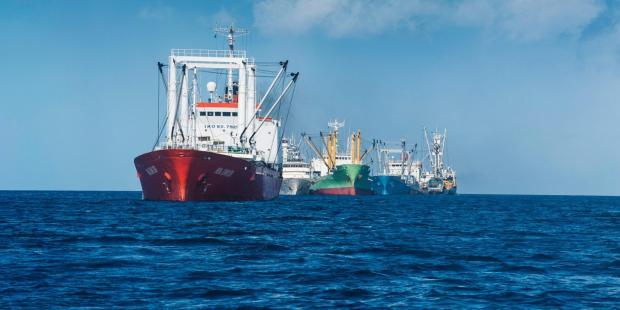 新冠疫情令世贸渔业补贴改革延期