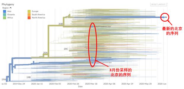 史隽疫情观察 北京新冠病毒序列公布!
