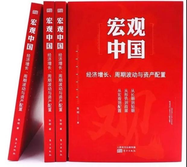 只要经济学家愿意:《宏观中国》书评
