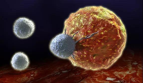 """癌细胞胃口这么好,如何釜底抽薪 """"饿死"""" 它们?"""