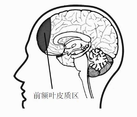 感觉学不进新知识?学会这两种思考模式,打破学习困境
