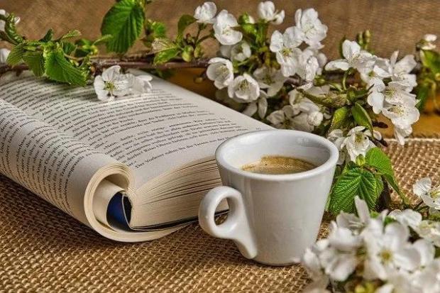 电子书——纸质书的终结者?
