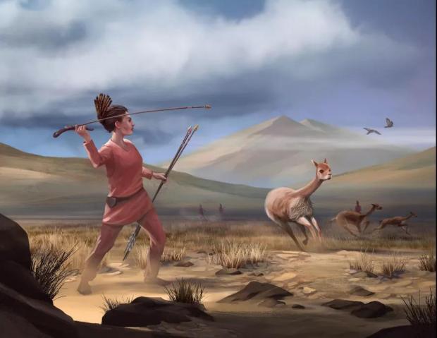 史前打猎都是男性?不,女猎人可能占一半