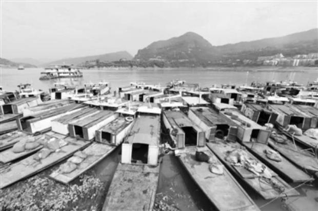 长江禁渔,保护的不只是鱼