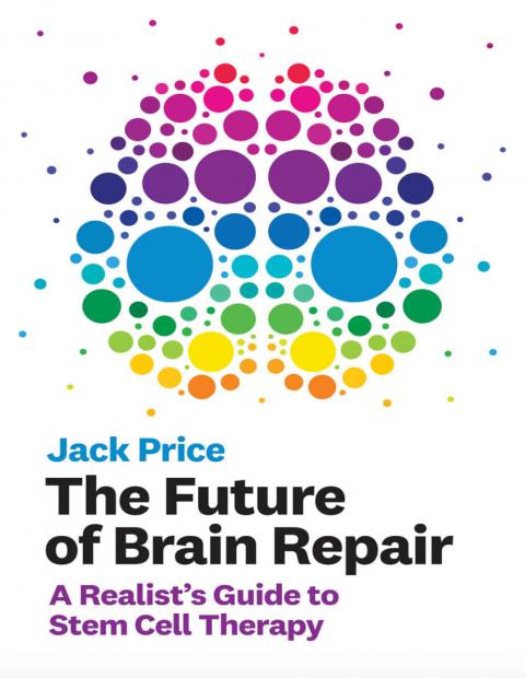 汪丁丁:神经干细胞与脑修复