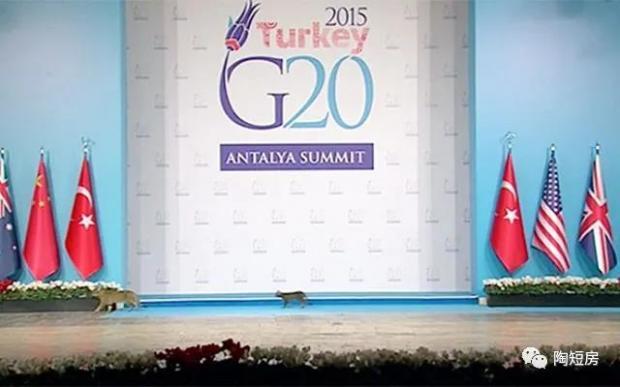 """如何重新""""激活""""G20机制?"""