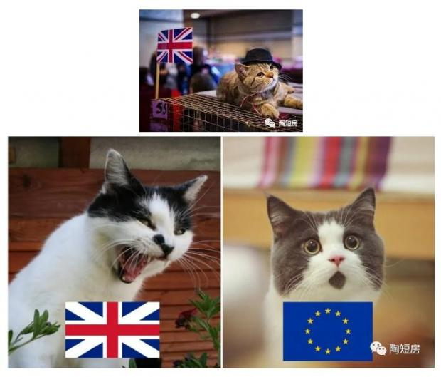 英国脱欧:最后关头的谈判与谈判的最后关头