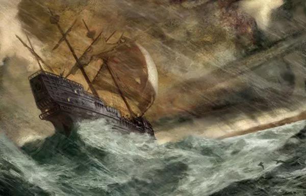 16世纪的沉船,诉说着500年前西非大象的生活