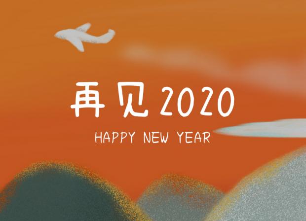 李银河:从世俗的忙乱中抽出时间,思考存在本身|再见2020