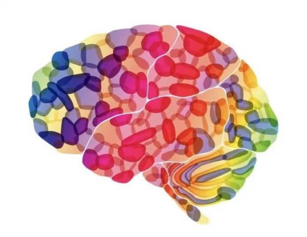 颜色的形状:大脑是如何处理颜色的?