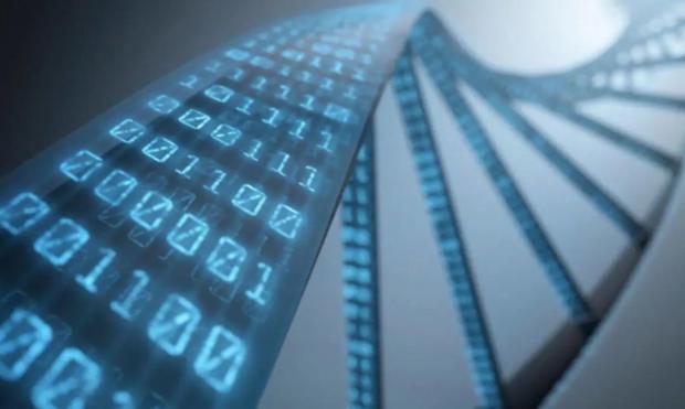 微信十年,从「数字化生存」到「数字化生活」