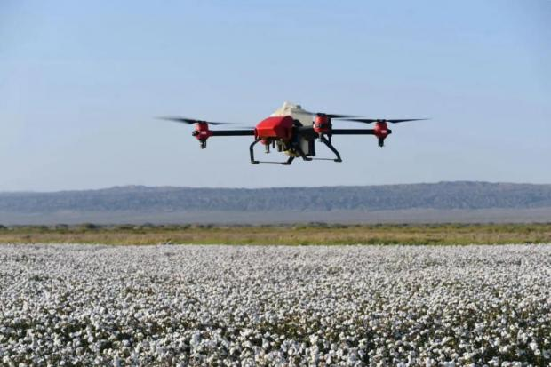 何帆:我在新疆看到了棉田里的无人机(下)