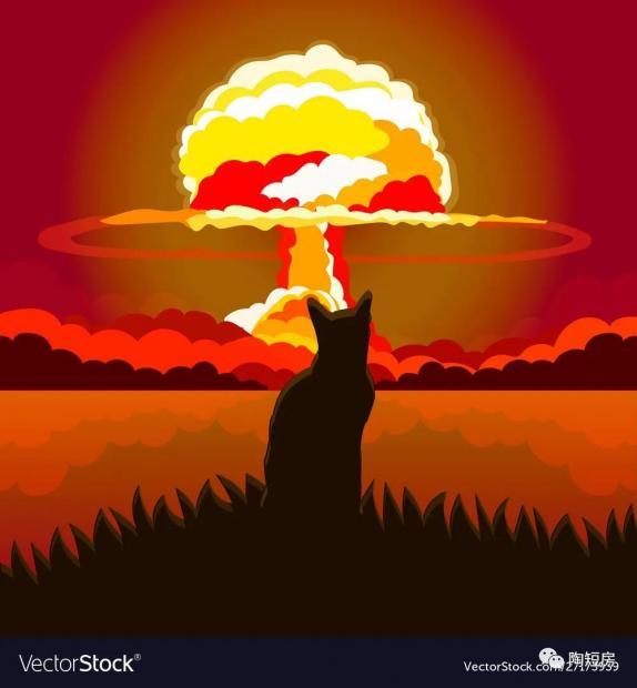 """伊朗核问题间接会谈重启:""""大力""""能出奇迹么?"""
