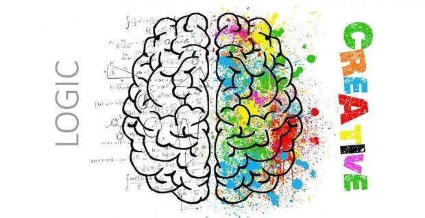 成绩好或不好,与大脑活动的变化有何关系?