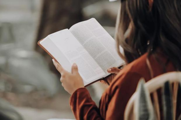 读书,看见自己