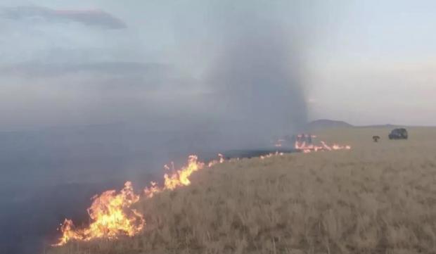 沙尘暴和草原大火背后:陷入干旱的蒙古国