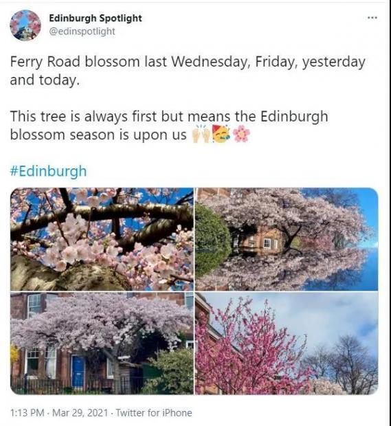 早春之喜,暖春之忧