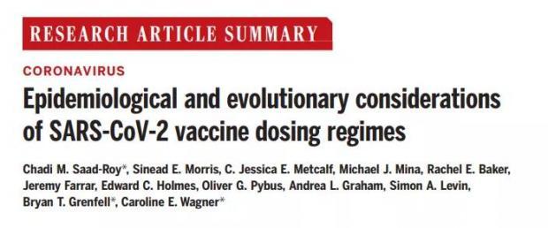 权威研究:新冠疫苗只打一针会有什么后果?