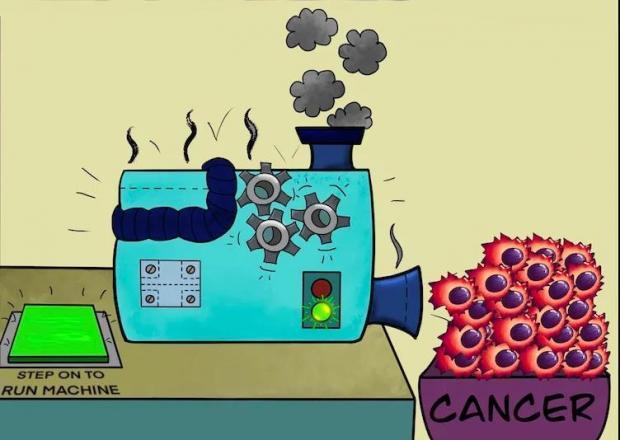 新发现:癌细胞爱吃糖?不,它们更爱吃蛋白质