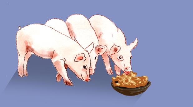 正大股份申请主板上市:猪肉价格持续走低 仍拟投生猪项目逾100亿元