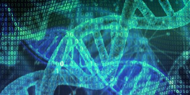男性Y染色体嵌合缺失,与代谢健康有何关联?