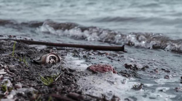 水体严重污染,鱼类如何适应?