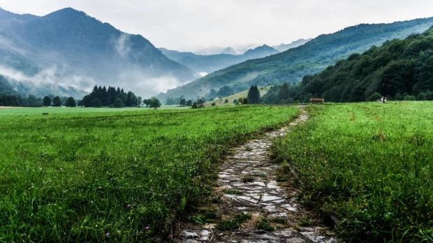 这一条泥泞的路,是生命赠予我们最别致的礼物