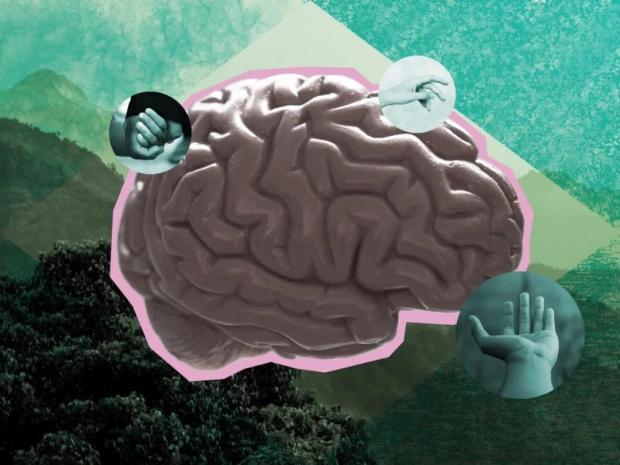 焦虑、抑郁,是大脑的错还是环境的错?精神疾病吃药就够了吗?