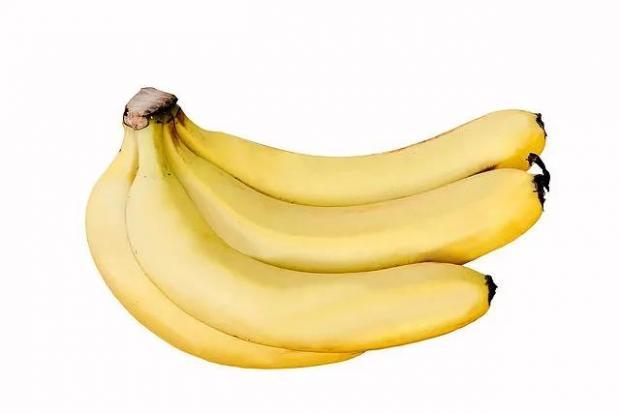香蕉的环球旅程