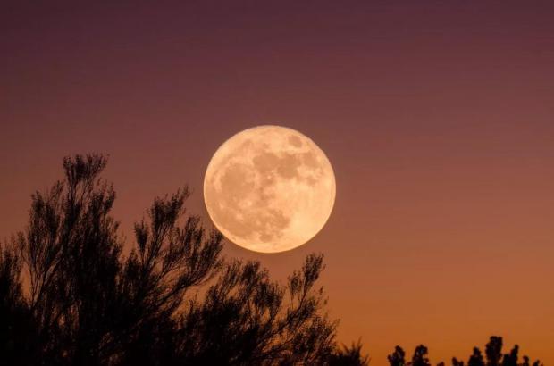 如果没有月饼……哦月亮,会怎么样?
